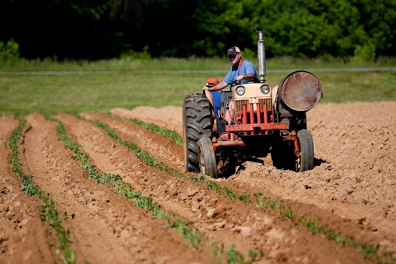 特定技能「農業」における外国人雇用について|基礎から学ぶ!